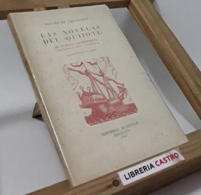Las novelas del Quijote. El curioso impertinente e Historia del cautivo (edición numerada) - Miguel de Cervantes Saavedra