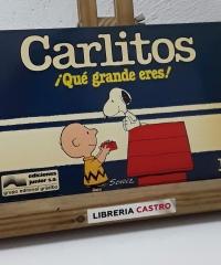 Carlitos ¡Qué grande eres! Nº 1 - Schulz