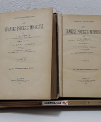 Lecciones de patología general. Los grandes procesos morbosos. (II Tomos) - J.J. Picot