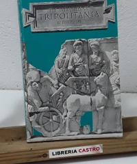An archaeological and historical guide to the pre-Islamic antiquities of Tripolitania - D. E. L. Haynes